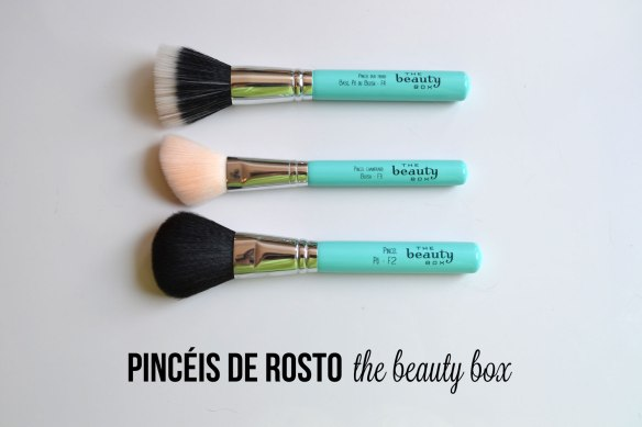pinceis-the-beauty-box-1